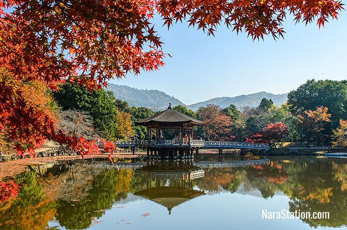 The Sagiike Pond in Nara Park